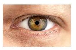 Oczy-piwne