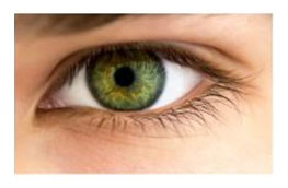 Oczy-zielone