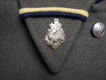 Wojsko Swastyka