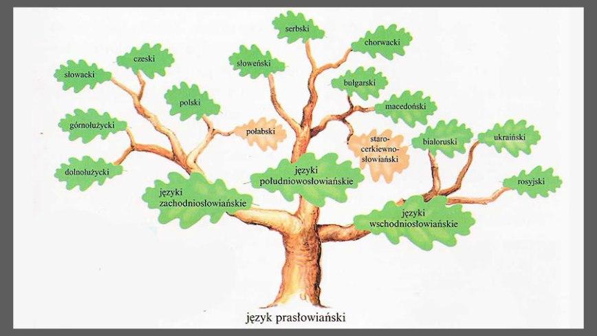Języki-słowiańskie