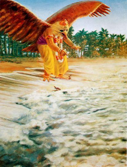 Garuda ptak gadak