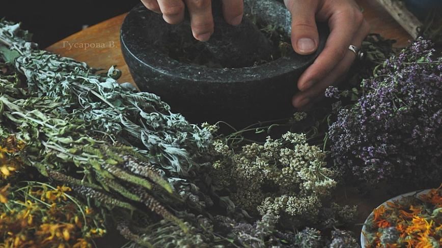 Zioła-ziołolecznictwo