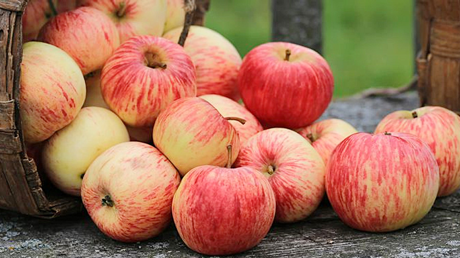Spas-Jabłkowy